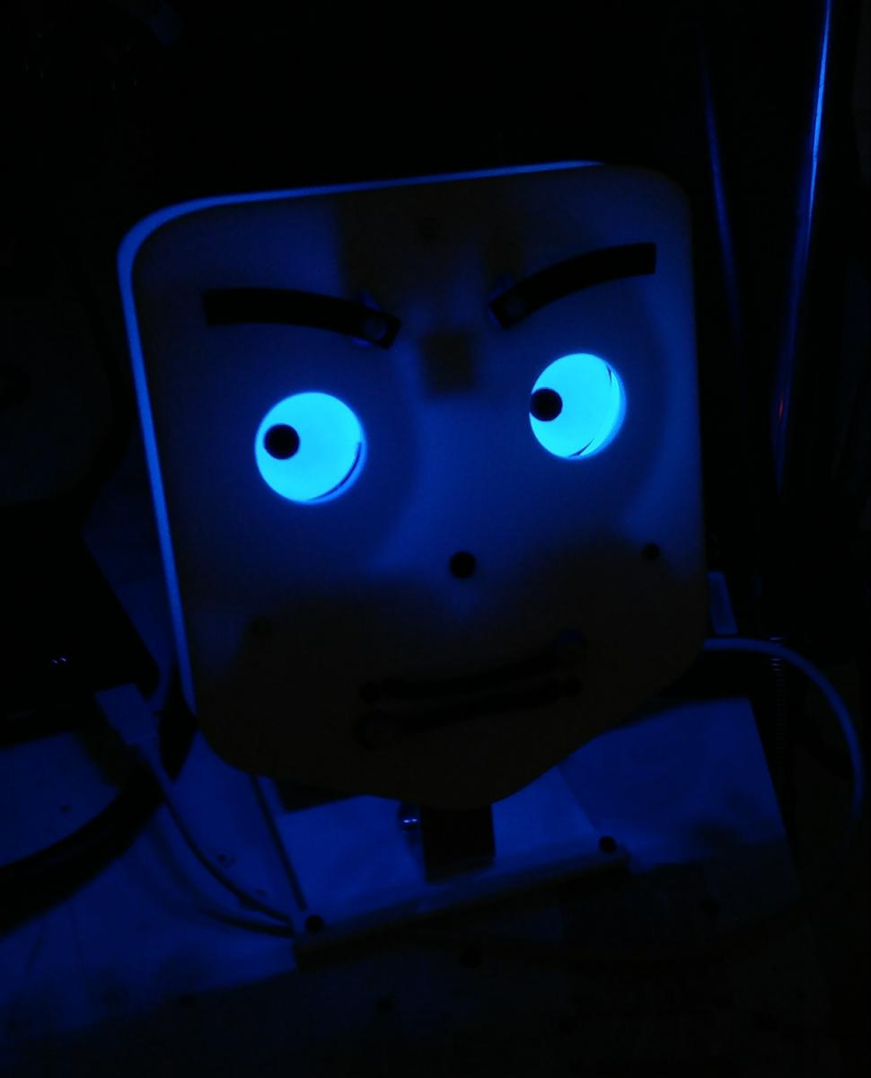 Damerino con gli occhi illuminati blu al buio